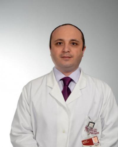 Prof. Dr. Alptekin Gürsoy